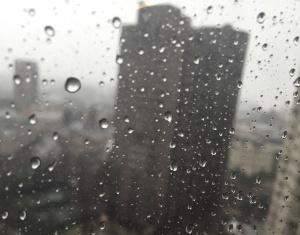 raincitycrop